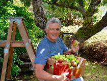 Danny Hooper Apple