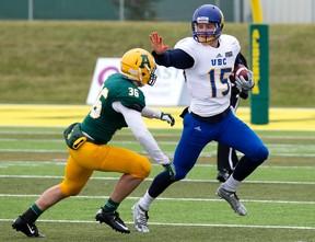 University of Alberta Golden Bears' Josh Taitinger (36) chases the UBC Thunderbirds' Michael O'Connor (15) at Foote Field, in Edmonton Alta. on Saturday Oct. 3, 2015. David Bloom/Edmonton Sun/Postmedia Network