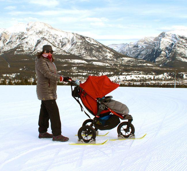 Kelly Patterson Polar Stroller