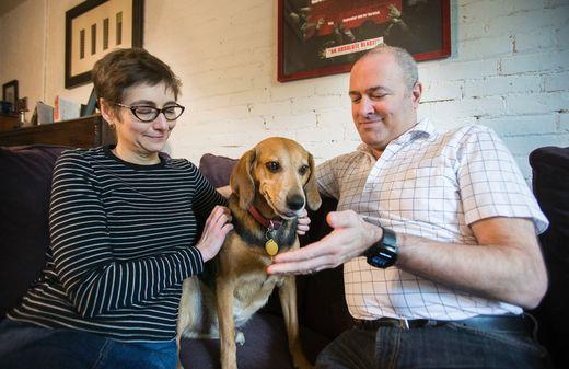 Pet Insurance Takes Bite Out Of Vet Bills Toronto Sun