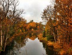 Nolin Creek, as seen in October 2015. (Mary Katherine Keown/Sudbury Star)