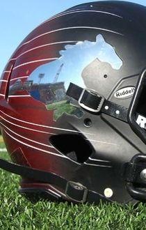 Stampeders helmet