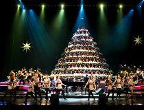 Edmonton Christmas Tree