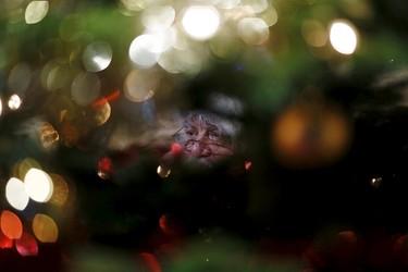 Actor John Field, dressed as Santa Claus, is seen through a Christmas tree at the Wetland Centre in London, Britain, Britain, Dec. 5, 2015. REUTERS/Stefan Wermuth