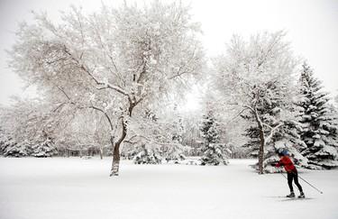 Frosted snow flakes. Helge Halvorsen cross country skies through Gold Bar Park, in Edmonton Alta. on Wednesday Jan. 20, 2016. David Bloom