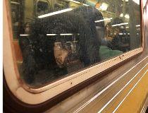 F Train sleeper