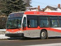 Calgary Transit bus