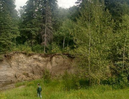 University of Chicago PhD student Haeden Stewart surveys in the Mill Creek Ravine. Photo supplied.