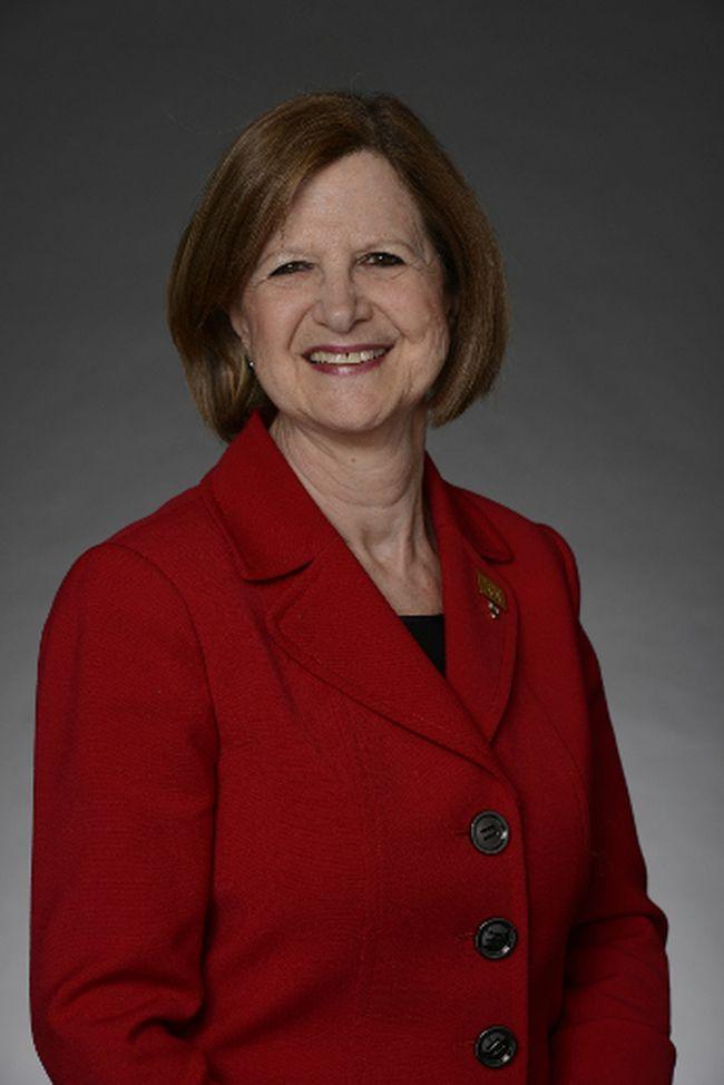 Dr. Doris Grinspun, chief executive officer of the Registered Nurses Association of Ontario. (Jane Willsie/For Postmedia Network)