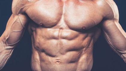 Bodybuilder's chest