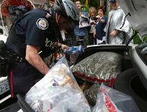 Toronto pot raids