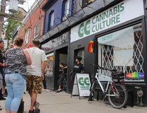 Cops raid Cannabis Culture on Queen St. W. on Thursday, June 23, 2016 (Nick Westoll/Toronto Sun)