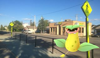 Pokemon hype reaches Sault Ste. Marie   Sault Star