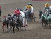 Chukwagon race at Stampede