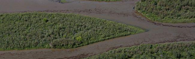 Oil is seen on the North Saskatchewan river near Maidstone