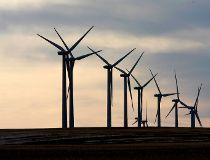 Wind turbines power Alberta schools