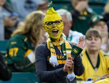 The Edmonton Eskimos' fan cheers on the team against the Saskatchewan Roughriders at Commonwealth Stadium, in Edmonton on Friday Aug. 26, 2016. Photo by David Bloom