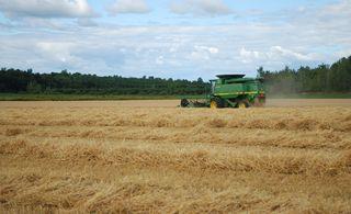 Mergers put farmers on edge   The London Free Press