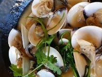Asian clams