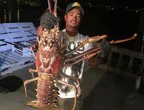 (Sanctuary Marine Bermuda Facebook photo)