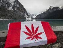 A cannabis-leaf parody of the Canadian flag