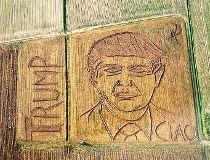 Trump field portrait