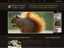 Squirrel Creek Wildlife Rescue