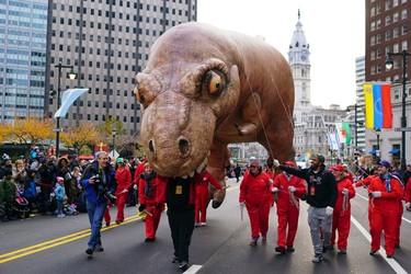 Handlers make the T-Rex balloon bite a parade volunteer, in Philadelphia, during the 97th annual Thanksgiving Day Parade, Thursday, Nov. 24, 2016. (AP Photo/ Joseph Kaczmarek)