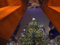 Rockefeller Christmas Tree Lighting 2016_4