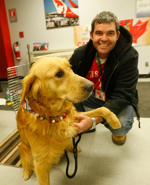 Dog Rescue Mississauga
