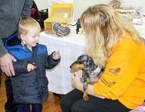 Community Volunteer Recruitment Fair. (File photo)