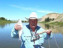 A Red Deer River badlands goldeye