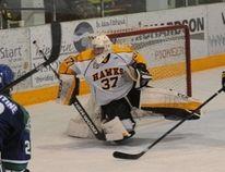 Nipawin Hawk goaltender Kristian Stead has decided to play hockey in Alaska for the Seawolves