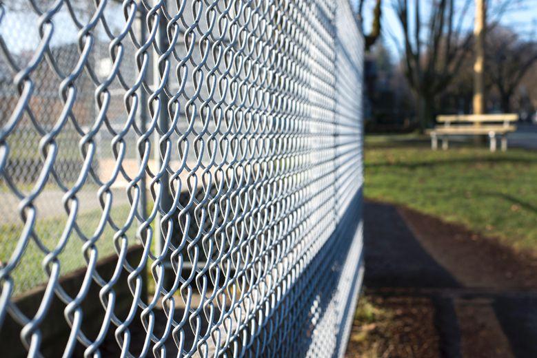 Picket fences has sex