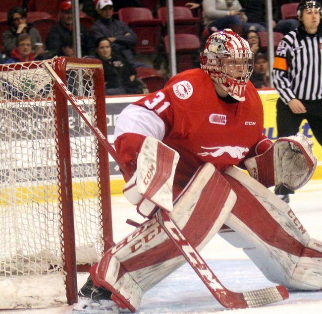 Soo Greyhounds goaltender Matthew Villalta watches the play during second-period Ontario Hockey League action against the Sudbury Wolves. (JEFFREY OUGLER/POSTMEDIA NETWORK)