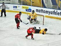 Canadian National Blind Hockey Tournament