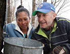 Richard Despatie and his wife Yuleiby watch sap drip into a bucket at Despatie Maple Sugar Bush in Sudbury, Ont. on Monday March 27, 2017. Gino Donato/Sudbury Star/Postmedia Network