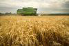 Premier Brian Pallister said a carbon tax won't apply to farmers in Manitoba.