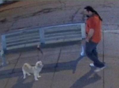 Surveillance footage of the alleged theft. (TORONTO POLICE/HANDOUT)