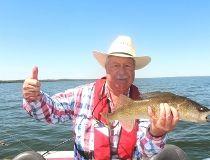 Neil hefts a fine Pigeon Lake walleye