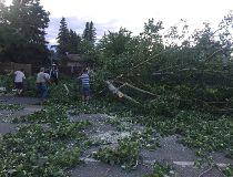 Red Deer windstorm