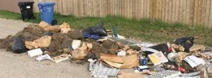 A sample of illegal dumping in alleyways in Calgary