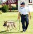 Danny service dog RCMP training Innisfail