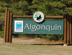 Established in 1893, Algonquin Park is the oldest provincial park in Canada.