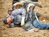 Bull rider Tim Lipsett