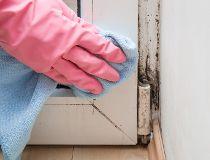 mold on doorway allergies