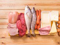 meat fish dairyu