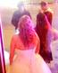 Edmonton wedding brawl
