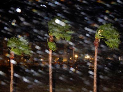 Rain is blown past palm trees as Hurricane Harvey makes landfall, Friday, Aug. 25, 2017, in Corpus Christi, Texas.  (AP Photo/Eric Gay)