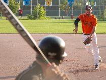 softball stock